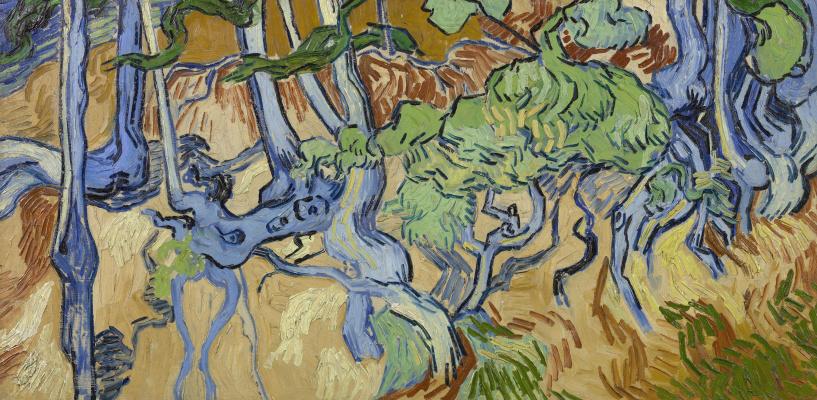 Винсент Ван Гог. Корни деревьев
