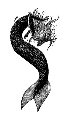 TheCatMAN. Dark Mermaid