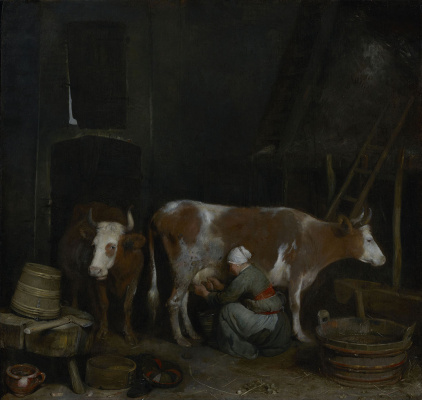 Gerard Terborch (ter Borch). The maid is milking a cow in the barn