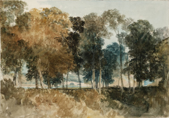 Joseph Mallord William Turner. The trees on the banks of the Thames and the bridge in the distance