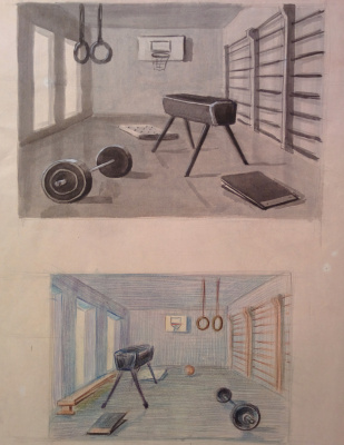 Dmitry Arkadevich Laptev. School gym
