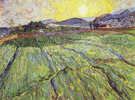 Винсент Ван Гог. Огороженное поле и восход солнца