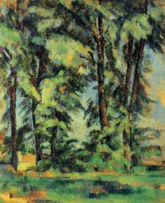 Tall trees in Ms. de Bouffan