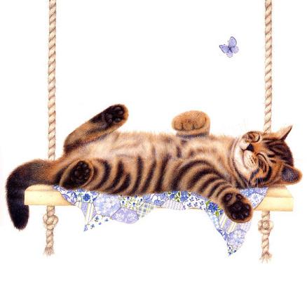 Анна Мортимер. Коты спят везде 4
