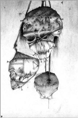 Адриан Смит. Мертвые головы