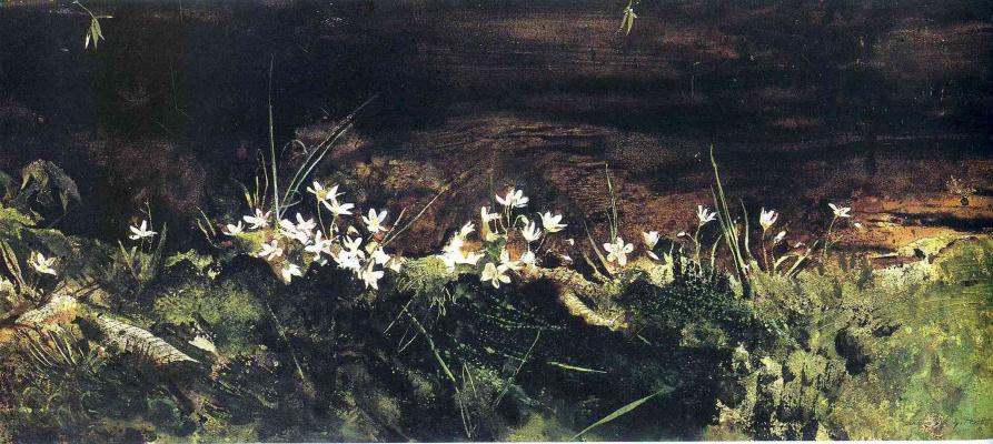 Эндрю Уайет. Белые цветы