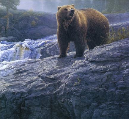 Даниэль Смит. Водопад