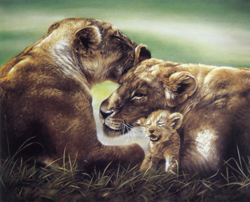 Лесли Харрисон. Африканские львы с детенышами