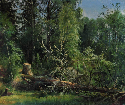 Ivan Ivanovich Shishkin. Felled tree