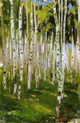 Birch in chashnikovo