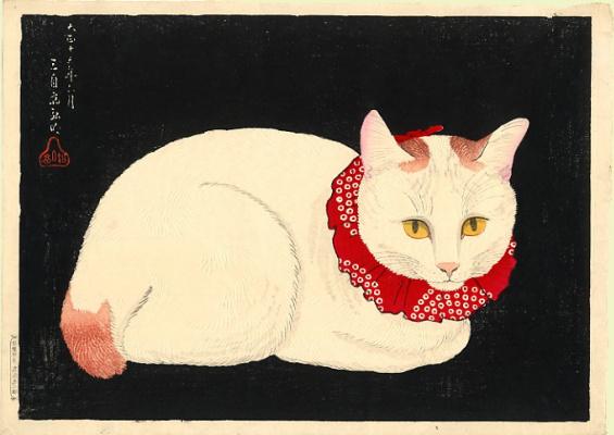 Шотеи. Белая кошка