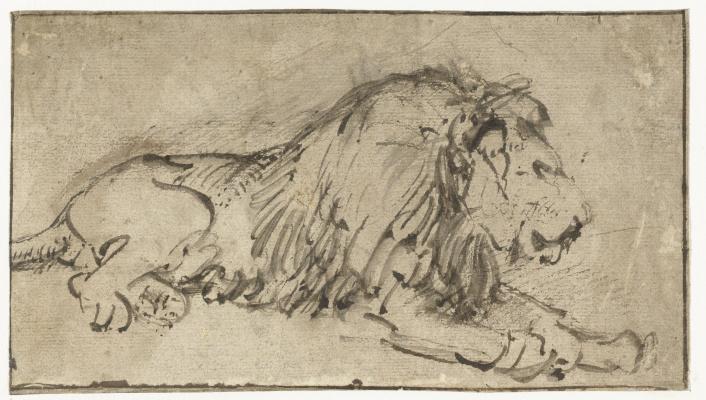 Рембрандт Харменс ван Рейн. Лежащий лев, повёрнутый вправо