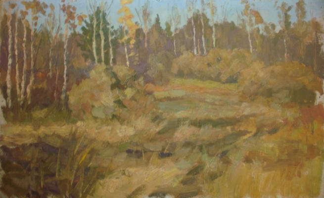 Nina Vasilievna Sedova. Cranberry Swamp