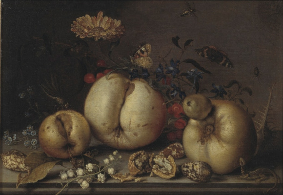 Baltazar van der Ast. Still life with fruit and shells on the table