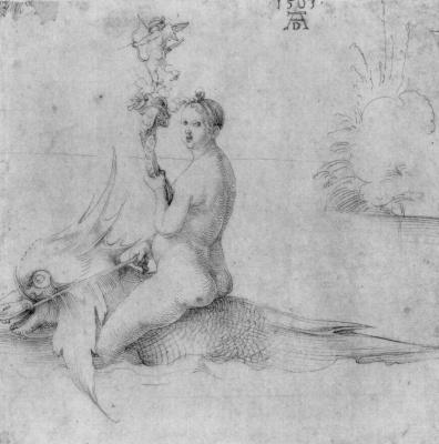 Albrecht Durer. Venus
