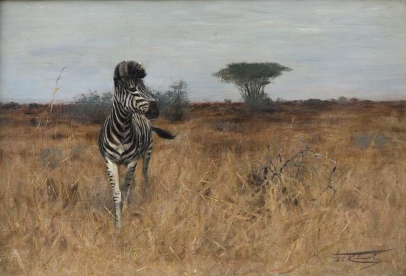 Friedrich Wilhelm Kunert. Winding Zebra
