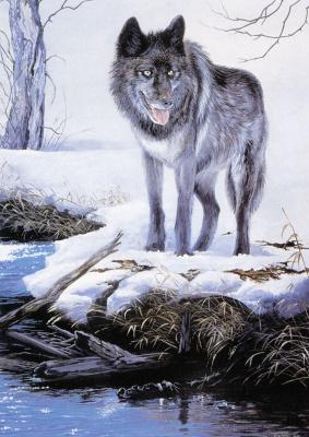 Труди Эстес. Волк на снегу