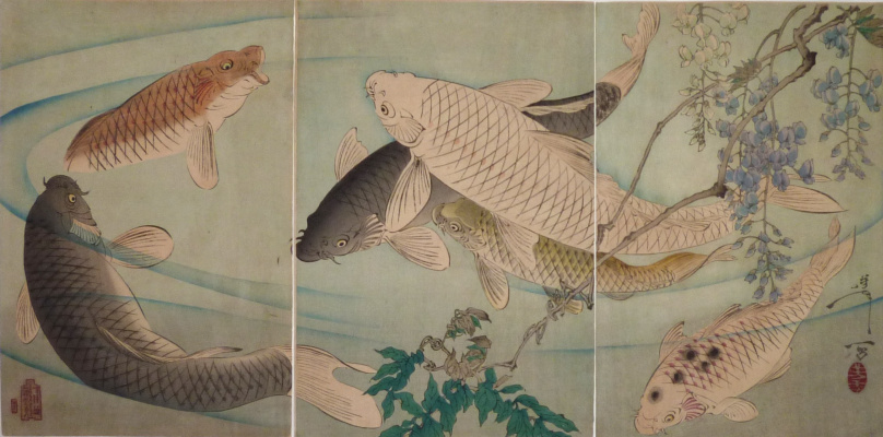 Цукиока Ёситоси. Триптих: Карпы кои, плавающие под свисающими ветками глицинии