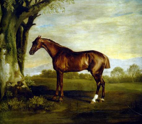 George Stubbs. Racehorse