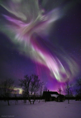Anastasia Lis. Northern Lights