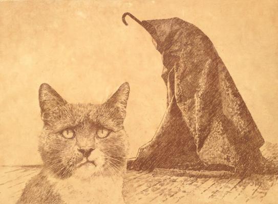 Vladimir Nikolayevich Kolesnikov. Museum cat