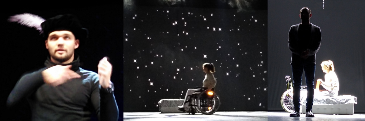 Natalya Garber. Inclusive Shakespeare. Photorilogy on Exceeding the Darkness of Disability