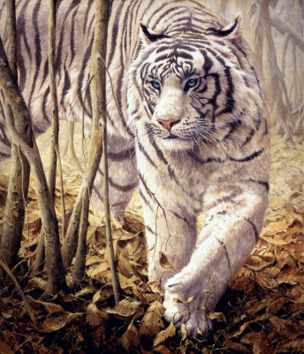 Джон Сирей-Лестер. Тихо-тихо - Белый Тигр