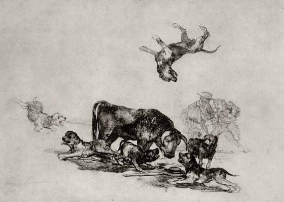 Франсиско Гойя. Бык, отбивающийся от собак