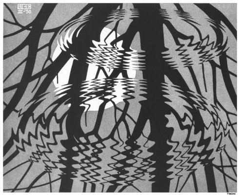 Maurits Cornelis Escher. Corrugated surface