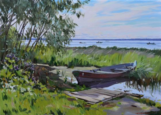 """Artem Yurievich Puchkov. """"Plescheevo lake"""""""