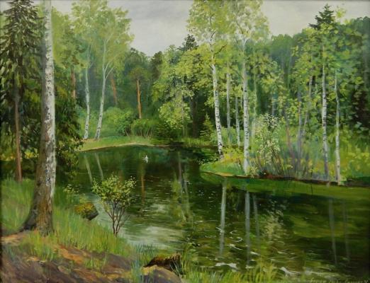 Marina Dmitrievna Razin. Borsky pond in Borka
