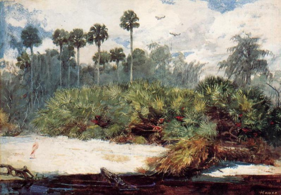 Winslow Homer. The Jungle Florida