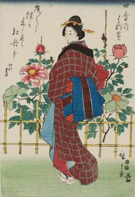 Утагава Хиросигэ. В саду с пионами