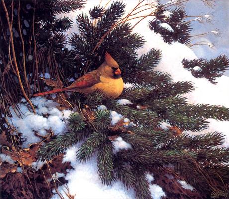 Лес Дидье. Зима