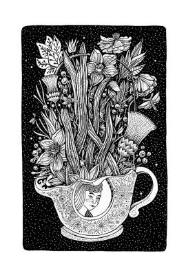 DMTRI SIUCHEREPAHA. A CUP