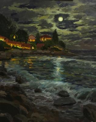 Anna Grigorieva. Sea lunar landscape