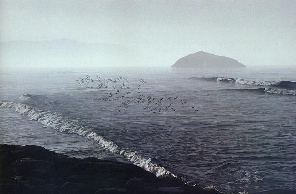 Дэвид Уорд. Море