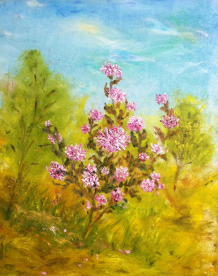 Rita Arkadievna Beckman. Bush chrysanthemums in an autumn garden