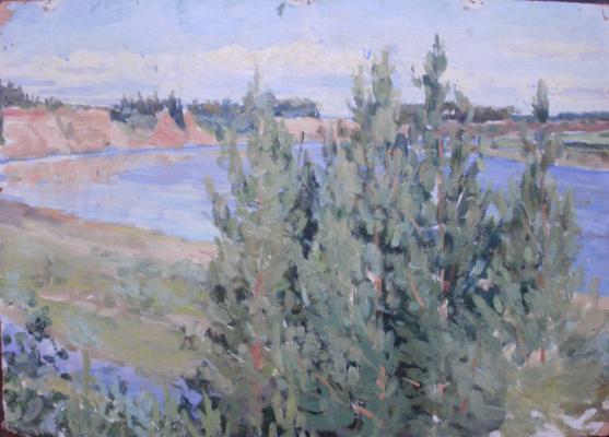 Nina Vasilievna Sedova. River bend