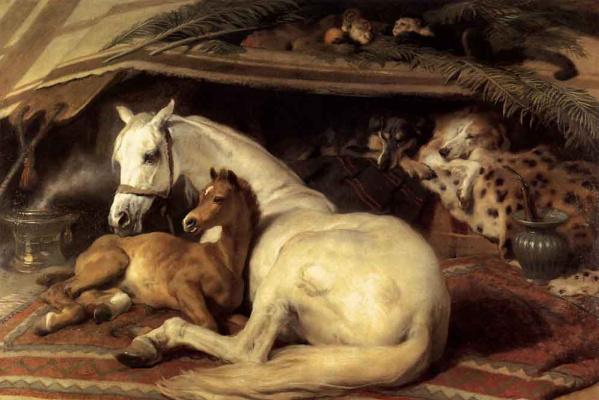 Эдвин Генри Ландсир. Лошадь