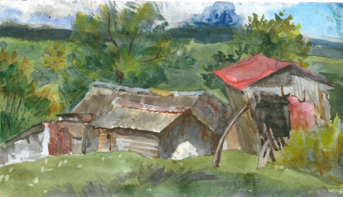 Valeria Evgenievna Salimon. Arsenyev houses
