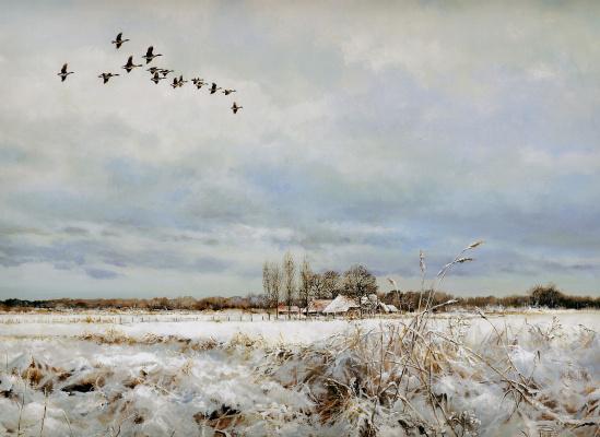 Питер Верстаппен. Природа 63