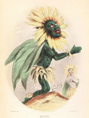 "Jean Inias Isidore (Gerard) Granville. Sunflower. The series ""Animate Flowers"""