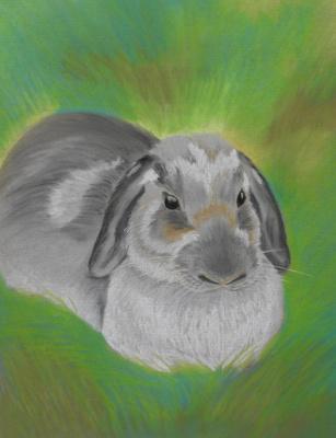 Olga Vladimirovna Nadtochaeva. Rabbit