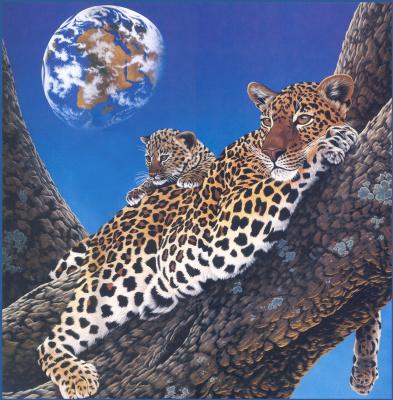 Уильям Шиммель. Леопарды