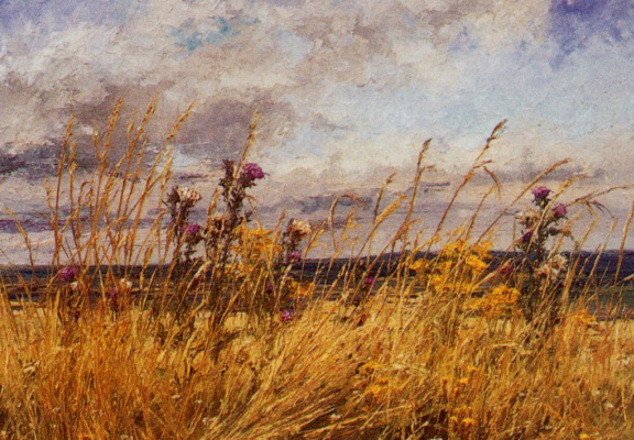 Чертополох и травы