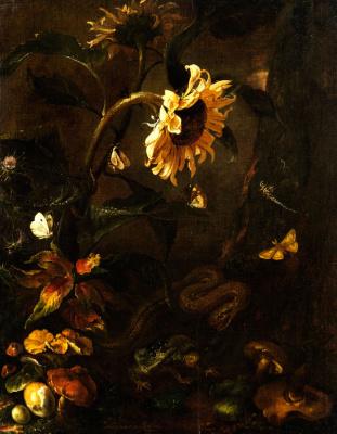 Отто Марсеус ван Скрик. Натюрморт с подсолнухом, змеей  и насекомыми