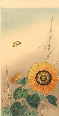 Ohara Koson. Sunflower