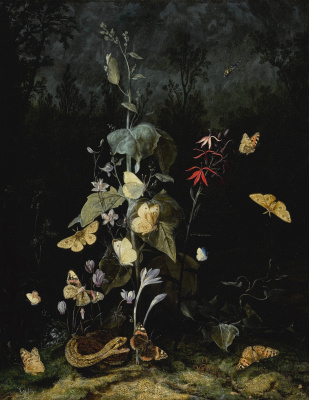 Otto Marceus van Scriec. Still life with wild flowers, including cyclamen, crocus, delphinium, with a snake and butterflies