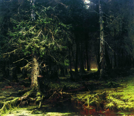 Julius Klever. Virgin forest